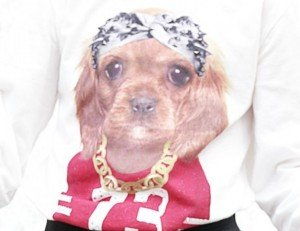 tee shirt chien